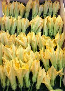 fleurs-de-courgettesweb